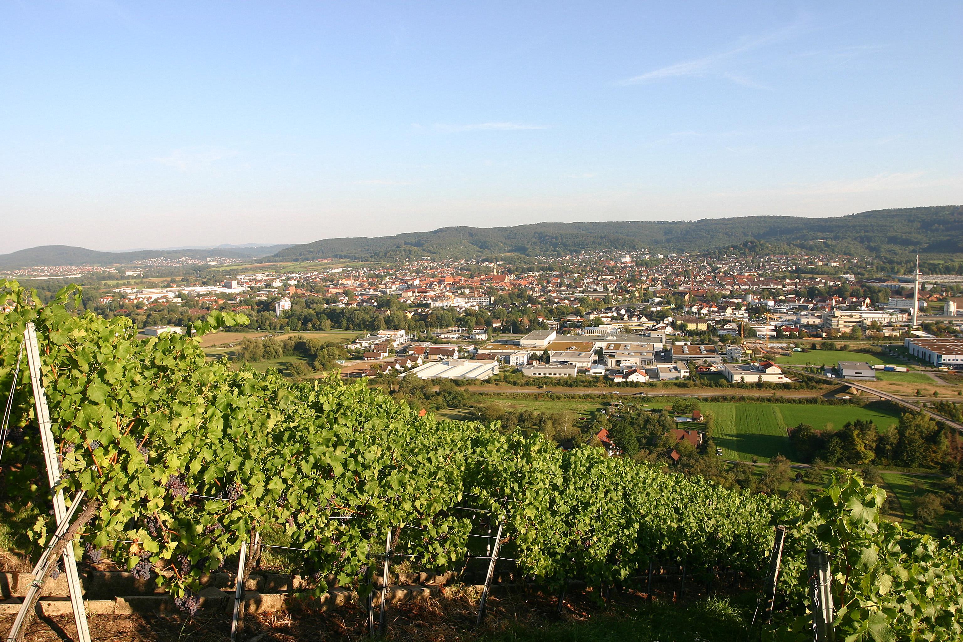 Blick vom Grafenberg auf Schorndorf