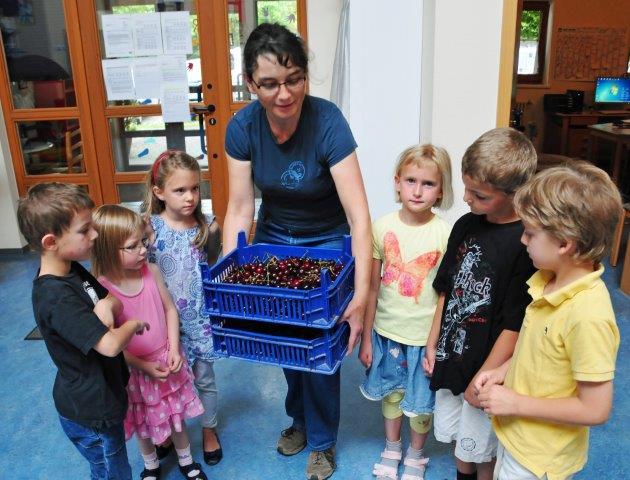 Stadt Schorndorf Die Daimlerstadt Schulfruchtprogramm Lauft Auch