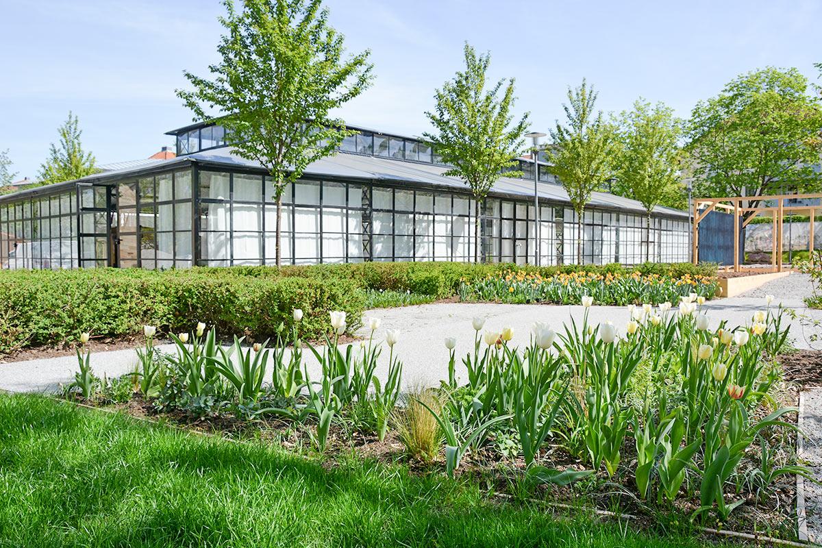 In der Orangerie im Schlosspark finden abwechslungsreiche Veranstaltungen statt.