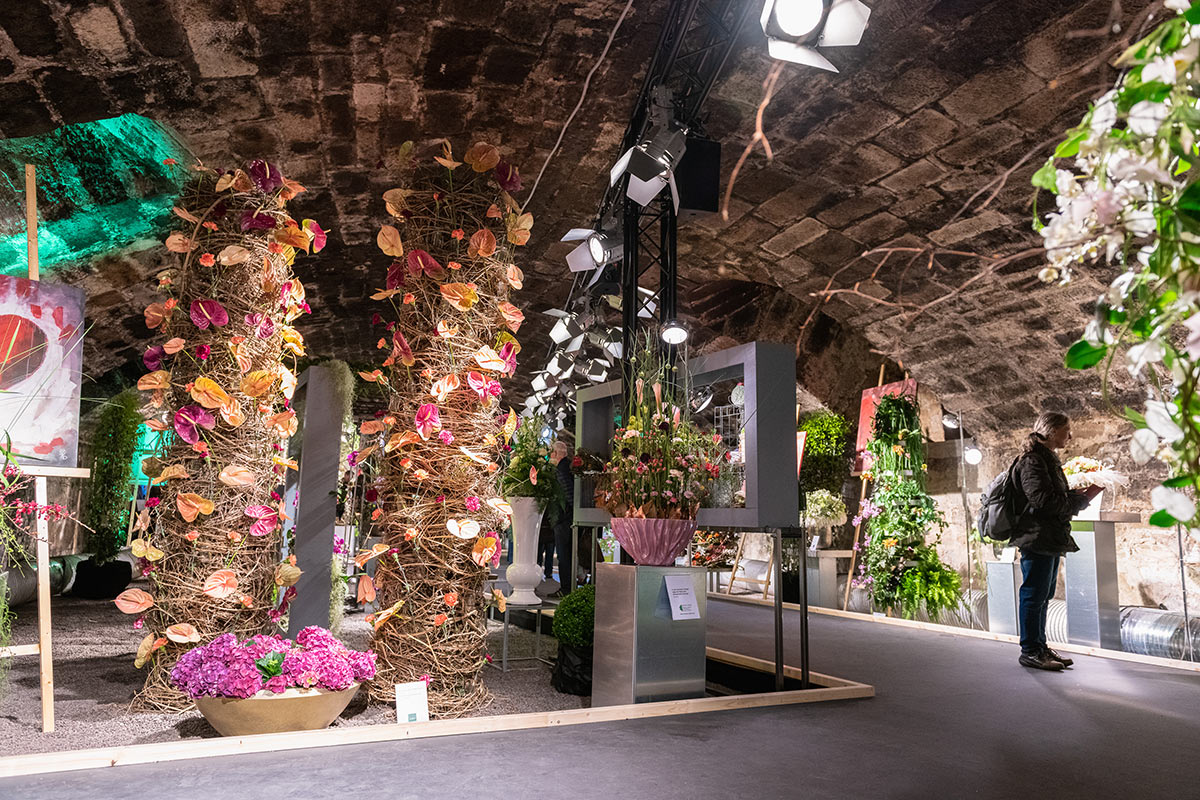 Blumenschau im Keller des Burgschlosses