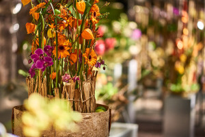 Auch die Blumenhalle schließt ihre Türen.