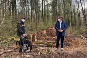 Förster Julian Schmitt und Bürgermeister Thorsten Englert (von links) im Aichenbach