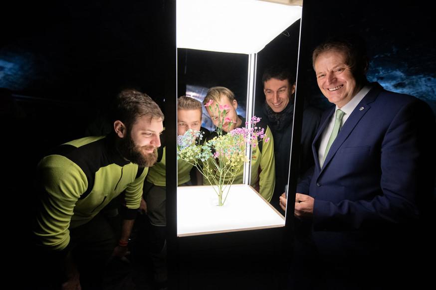 Faszinierend: tanzende Blüten als Exponat von Milla&Partner ab 10. Mai im Schlosskeller.