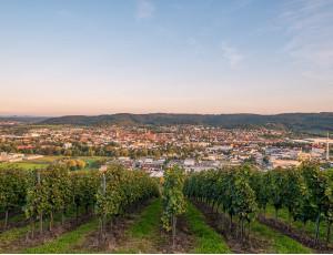 Blick auf Schorndorf vom Grafenberg