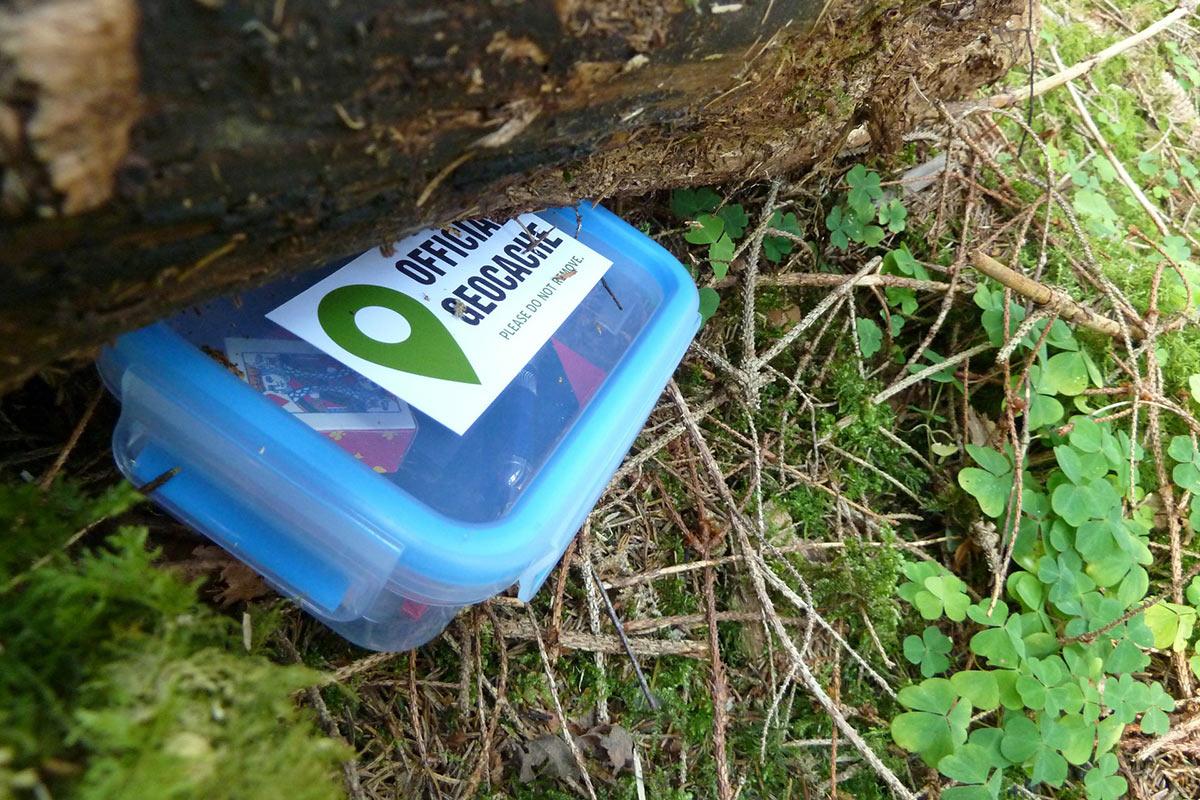 Geocaching-Box unter einem Baumstumpf
