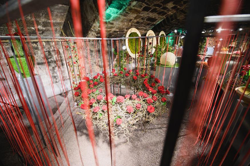 Noch bis 16. Juni dreht sich im Schlosskeller alles um die Königin der Blumen: die Rose.