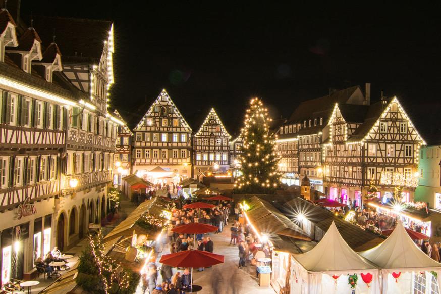 Die Zentralen Dienste sind auf der Suche nach einem Weihnachtsbaum für den Marktplatz.