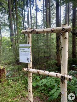 Waldbegang Schorndorf