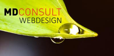 Header_Webdesign